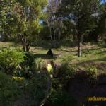 Wild-Africa-Trek-wdwradio-704