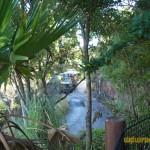 Wild-Africa-Trek-wdwradio-826