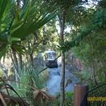 Wild-Africa-Trek-wdwradio-827
