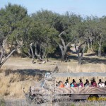 Wild-Africa-Trek-wdwradio-834