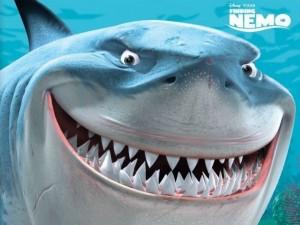 Finding-Nemo-Bruce
