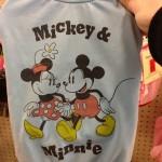 Disneypets4