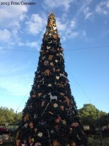25 PPDC DAK Tree