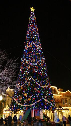 Christmas Tree Ornaments Birds